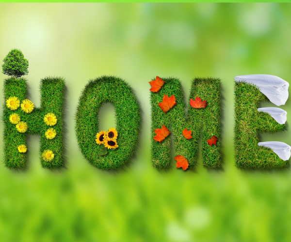 Dessin home thème vert